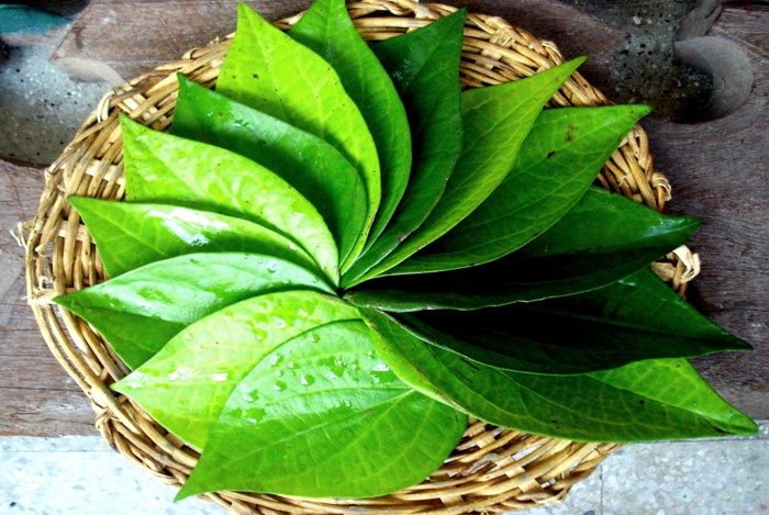 home remedies for bloated stomach betel leaf