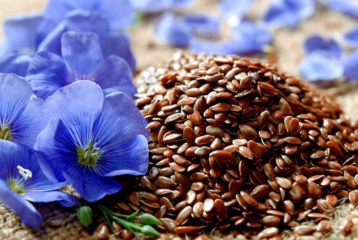 home remedies for peptic ulcer Linseed