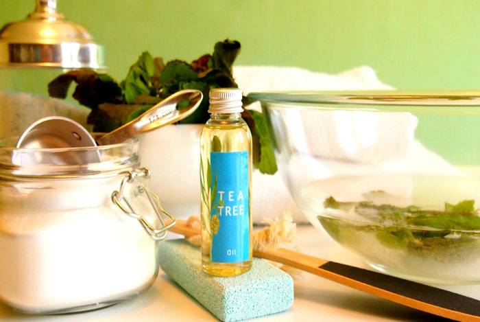 home remedies for pimples tea tree oil