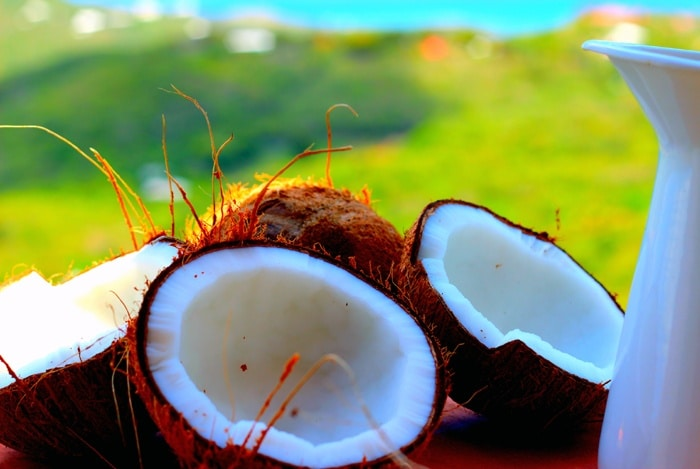 home remedies for shiny hair Coconut Milk