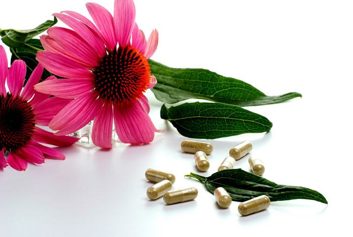 home remedies for swollen lymph nodes Echinacea