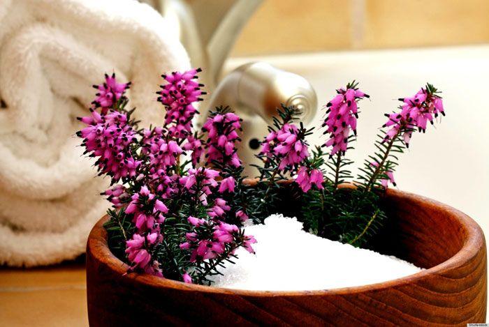 home remedies for dandruff salt