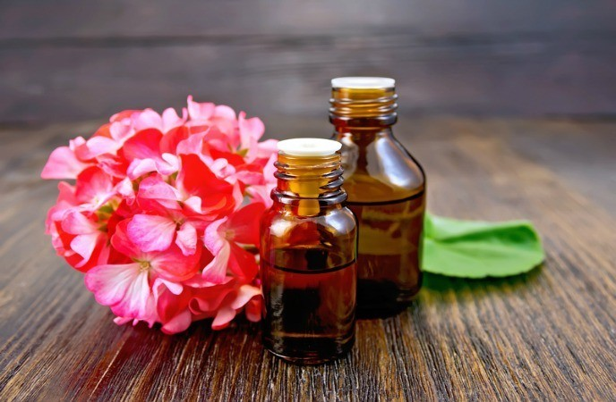 essential oils for weight loss rose