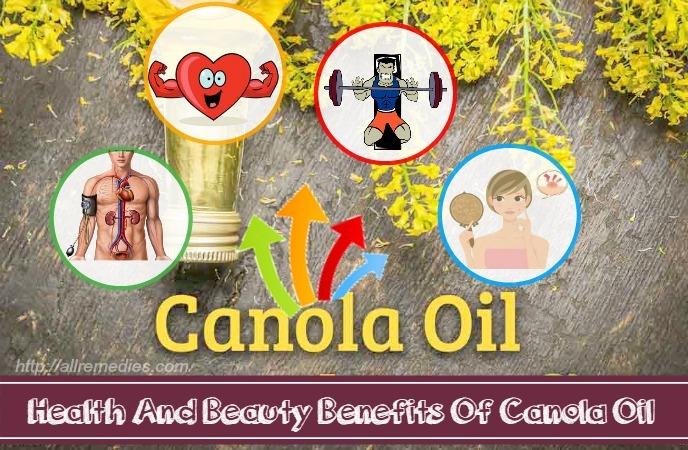 benefits of canola oil
