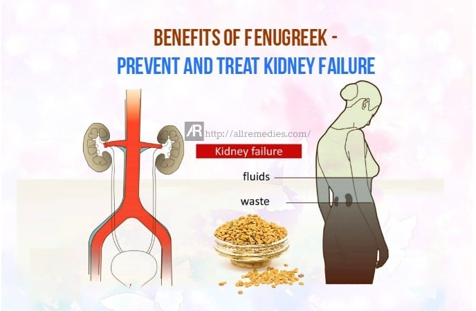 benefits of fenugreek