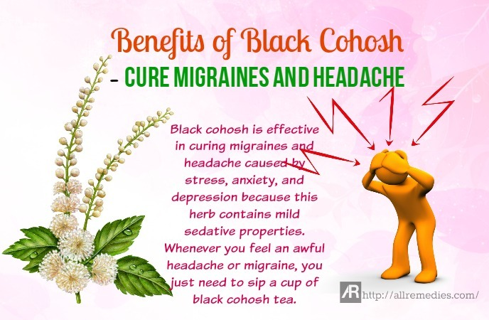 benefits of black cohosh