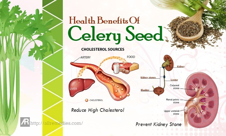 benefits of celery seed