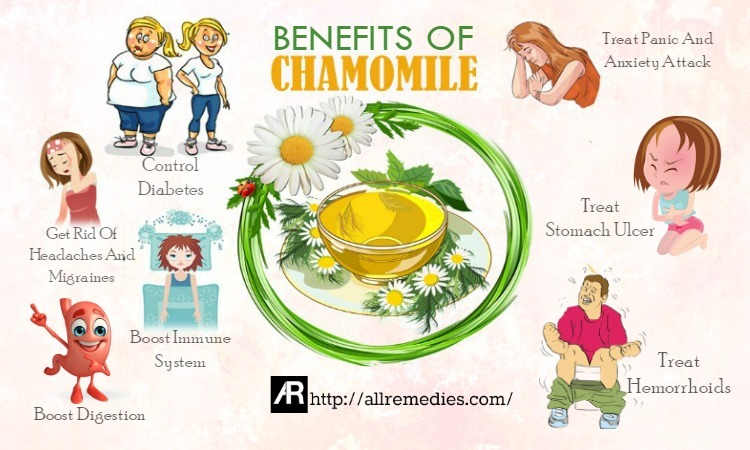 benefits of chamomile