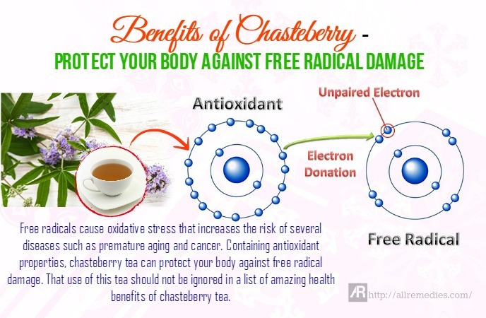 benefits of chasteberry