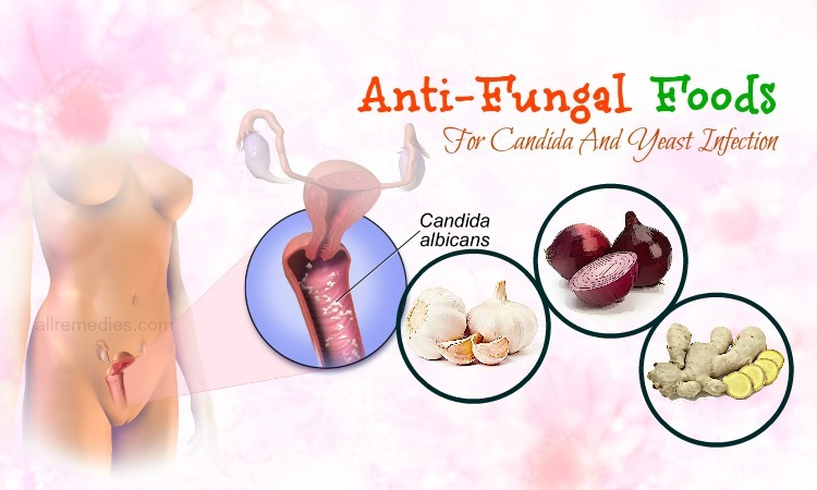 anti-fungal foods