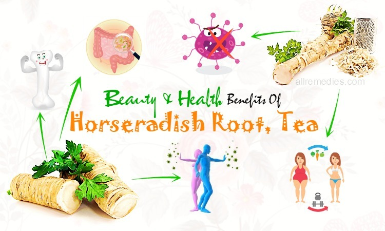 benefits of horseradish