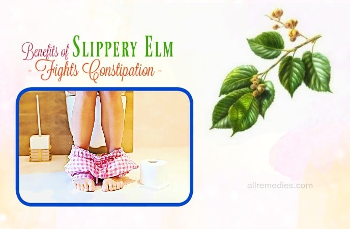 benefits of slippery elm