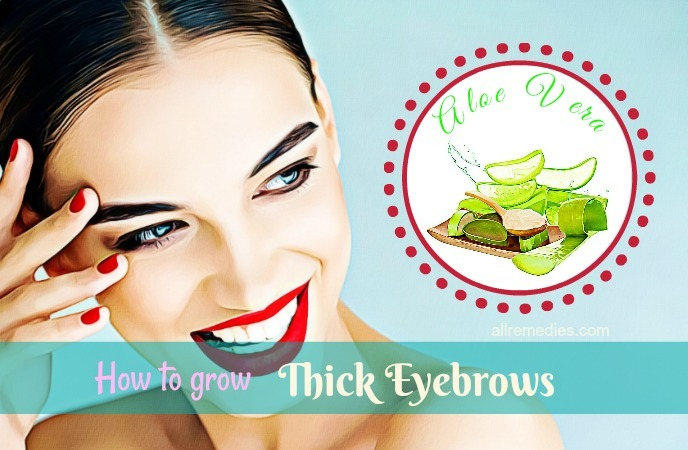 how to grow thick eyebrows - aloe vera