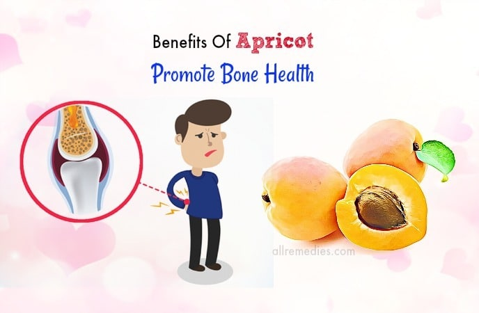 benefits of apricot kernel