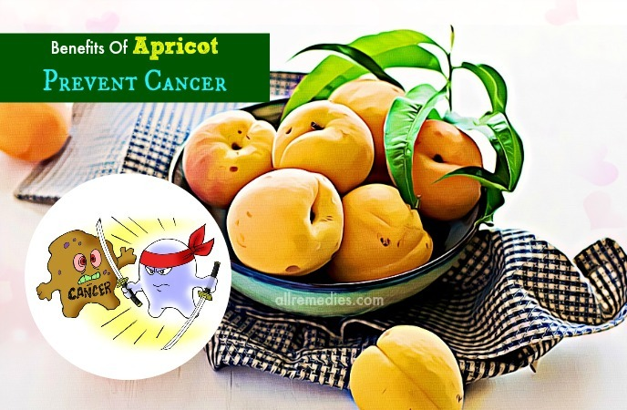 benefits of apricot oil