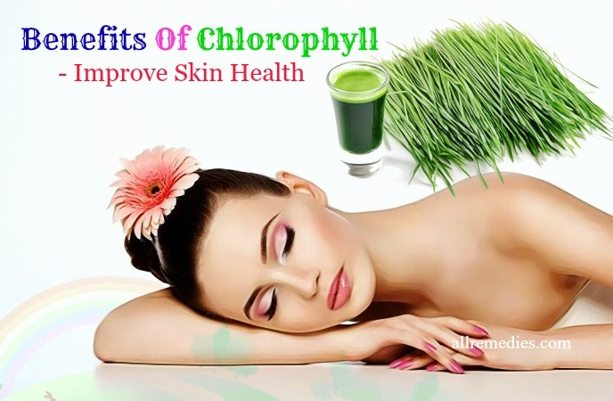 benefits of chlorophyll for skin