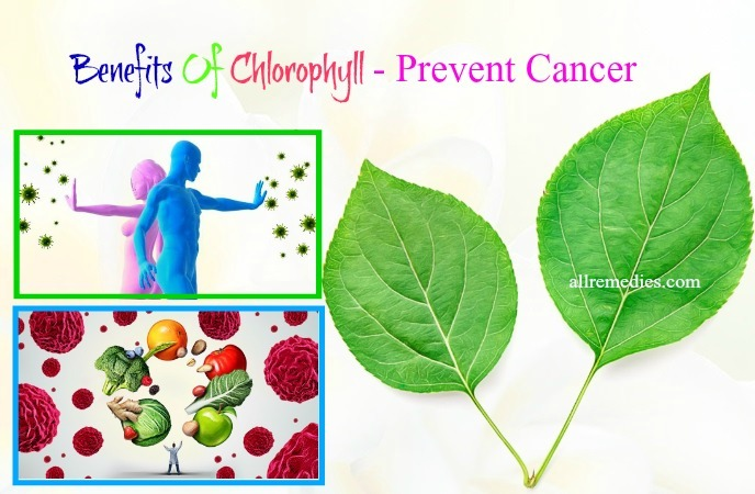 benefits of chlorophyll