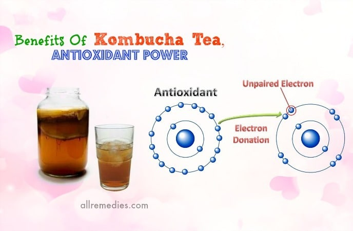 benefits of kombucha tea