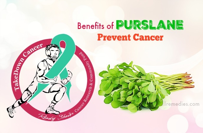 benefits of purslane leaves