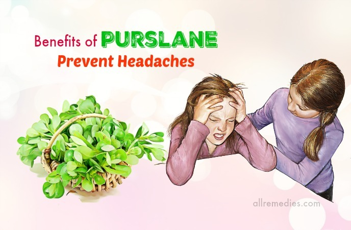 benefits of purslane seeds