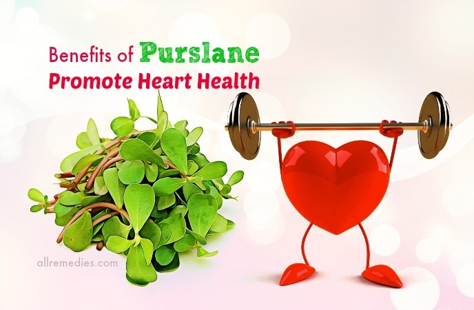 health benefits of purslane