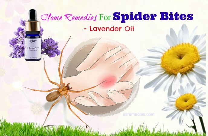 home remedies for spider bites on face