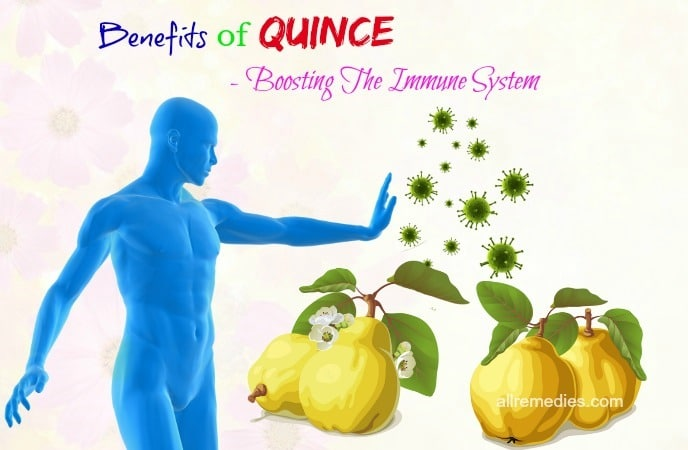 benefits of quince leaves